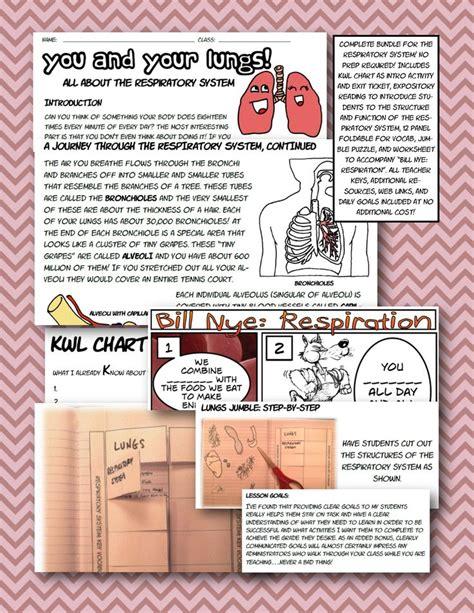 Bill Nye Respiration Worksheet by Respiratory System Bundle Foldable Interactive
