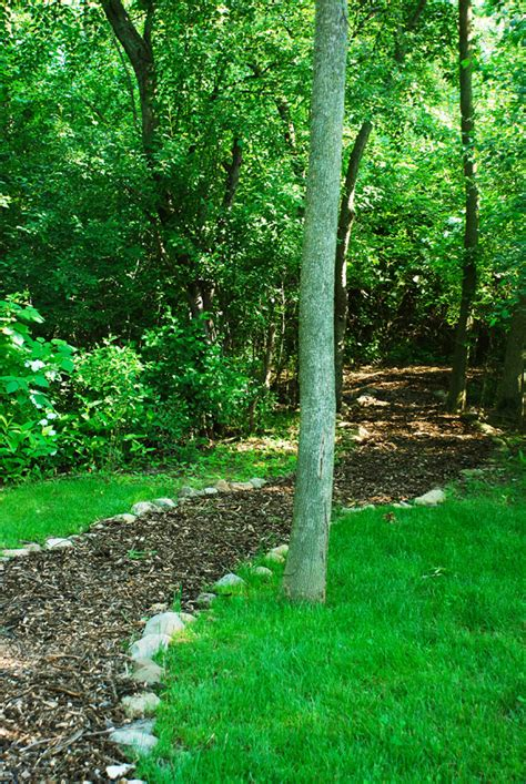 wooded backyard ideas landscaping ideas wooded backyard pdf