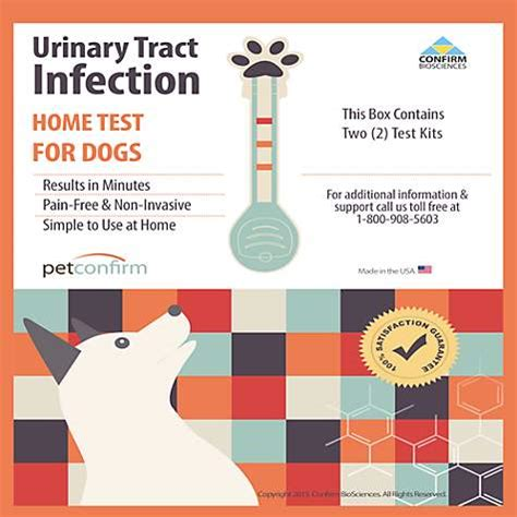 petconfirm uti test kit petco