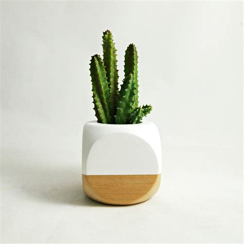 cactus planter mini geometric planter white wood plant not included