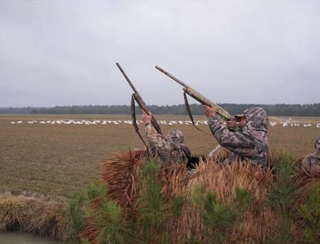 curtain blind hunting waterfowl hunting finest waterfowl hunting available for