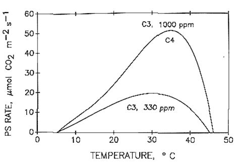 temperature response curve of rates of leaf respiratory co2 release r 7 effects of increasing carbon dioxide levels and climate change managing water