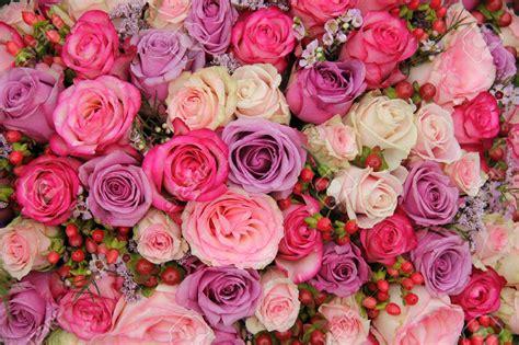 imagenes de flores multicolores 41199697 arreglo de rosas en colores pastel de la boda de