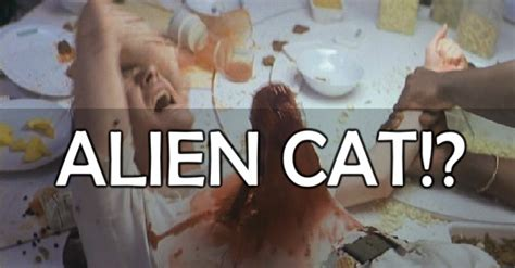 Cat Alien Meme - alien cat by yukitotsukishiro meme center