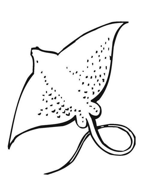 sea animal coloring pages sea animal coloring pages sea animals stingray