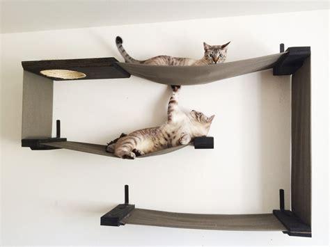 shelves for cats cat shelves nz images