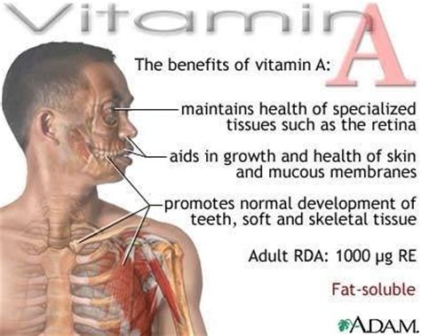 Benefits Of Mba In Healthcare by Health Benefits Of Vitamin A