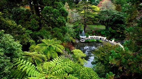 Botanic Gardens Wellington Attraction Expedia Co Nz Wellington Botanical Gardens