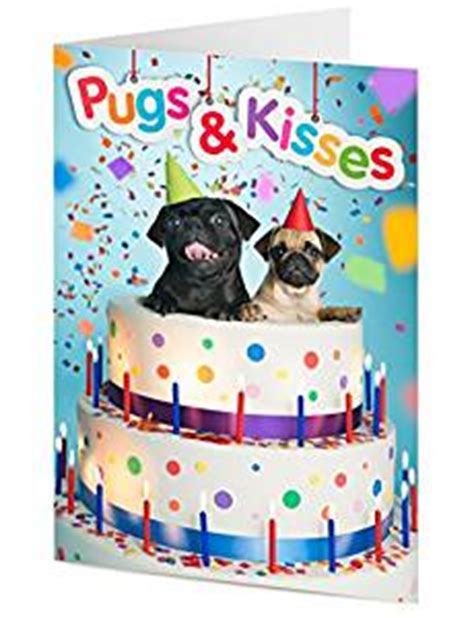 pugs and kisses a wish novel books pugs kisses two pugs emerge from birthday cake