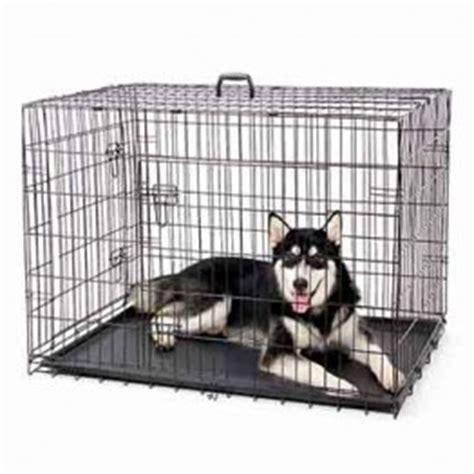 gabbia cani passeggini per cani trasportino per cani