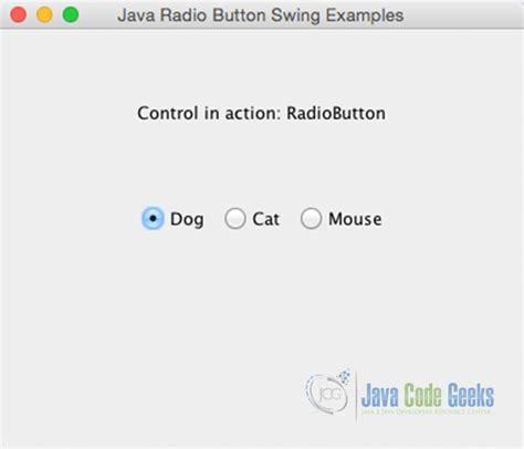 java swing radio button group java swing radio button exle exles java code geeks