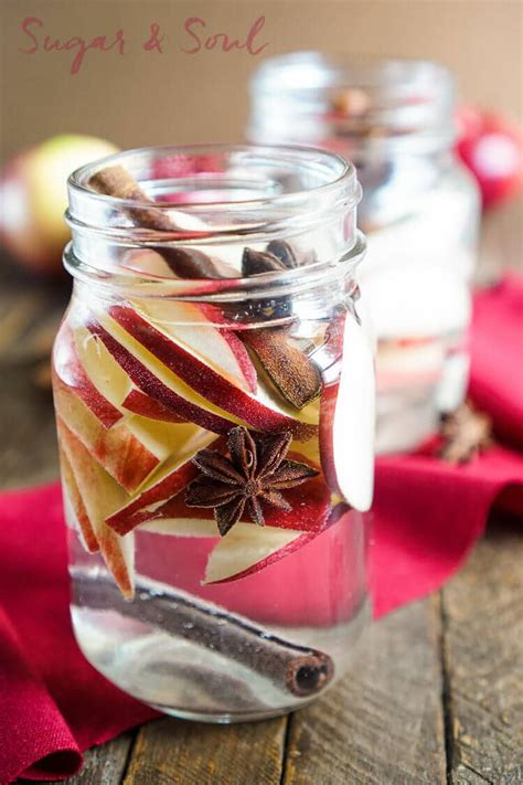 Detox My Mac Reddit by Healthy Apple Spice Detox Water Recipe Sugar Soul