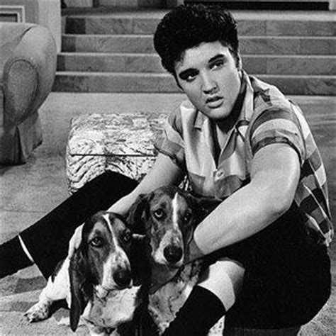 you ain t nothin but a hound you ain t nothin but a hound elvis
