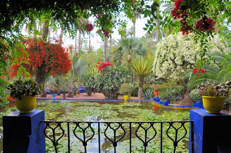 le led jardin file le jardin des majorelle 14 jpg wikimedia commons