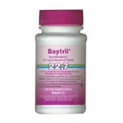 enrofloxacin for dogs baytril