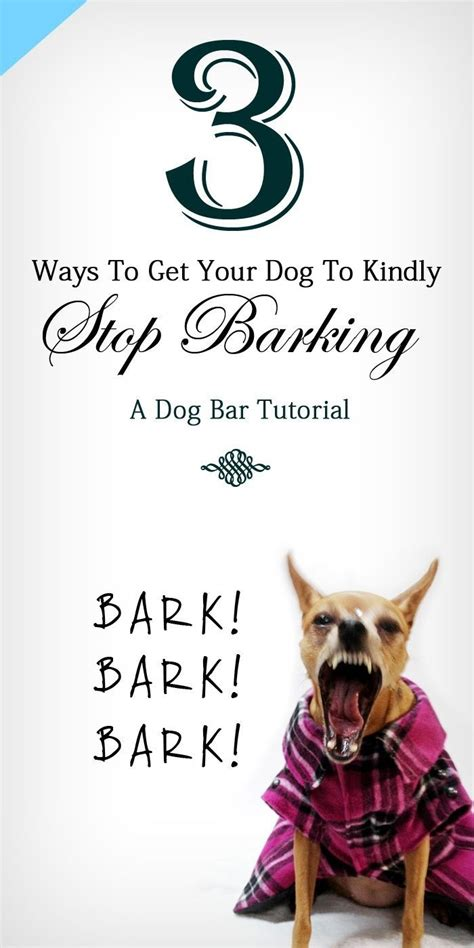 how to make my stop barking how to make a stop barking