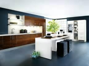 Modern Contemporary Kitchen : Modern Contemporary Kitchens