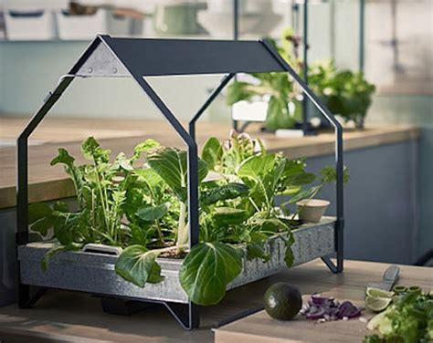 ikea  launched  indoor garden   stops