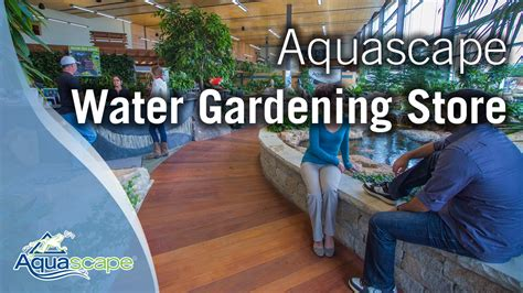 aquascape store the quot new and improved quot aquascape water gardening store