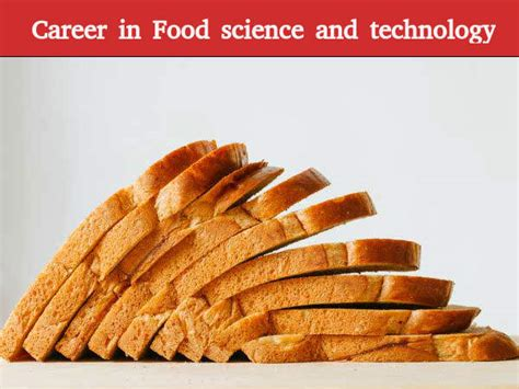 Mba In Food Science And Technology In India by What Is Food Science And Technology Careerindia