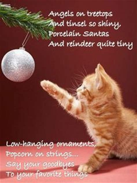 christmas bell quotes and captions 1000 images about cats on cats vintage cards and