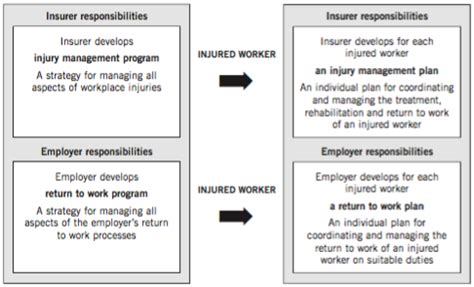 guidelines for workplace return to work programs 2010