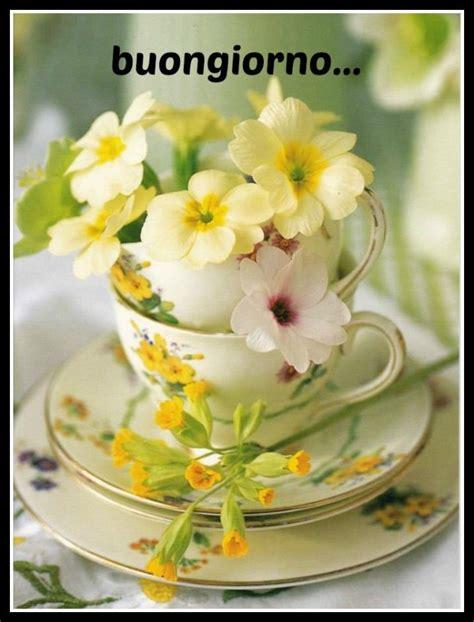 poesia i fiori buongiorno con fiori immagini buongiorno