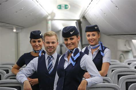 cabin crew cabin crew members tui belgium