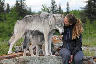 Bedroom With Two Twin Beds The Story Of The Yamnuska Wolfdog Sanctuary Leavetown
