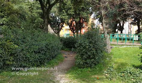 il giardino the prato prato giardino il comune di viterbo presenta uno studio e
