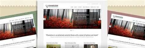 elegant themes chameleon exles elegant themes review the truth about nick roach s