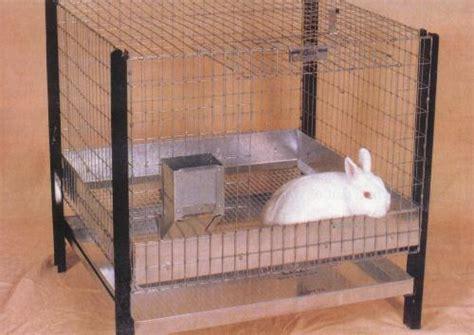 Makanan Kelinci Pronutri Rabbit By Dr Bunny kelinci wong kito buat kandang sendiri