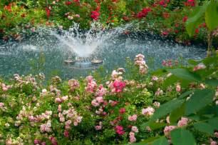 gardens gardening tips garden guides