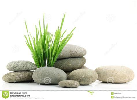 Zen Design Concept Zen Stone With Fresh Grass Stock Images Image 14475404