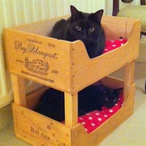les 25 meilleures id 233 es de la cat 233 gorie niche pour chat