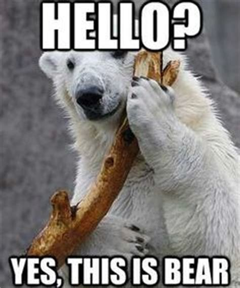 Polar Bear Meme - 1000 images about my favorite memes on pinterest bear