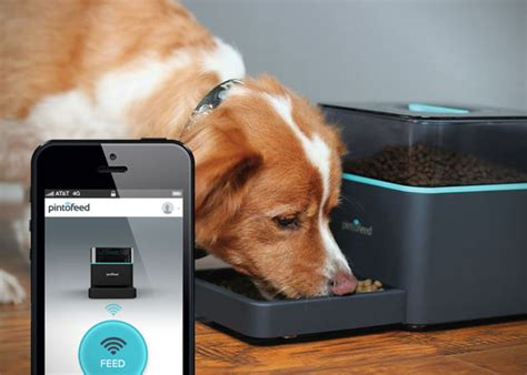 pet technology pintofeed automatic pet feeder hiconsumption