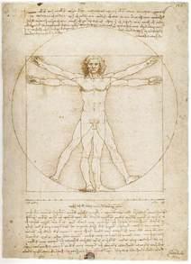 bd enigma vitruvian man by leonardo da vinci