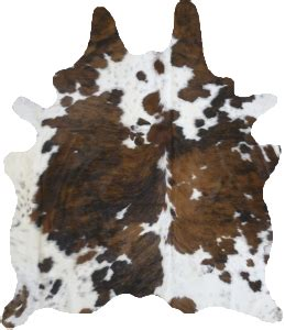 How To A Cowhide - great source for cowhide rugs studio cow hide rug
