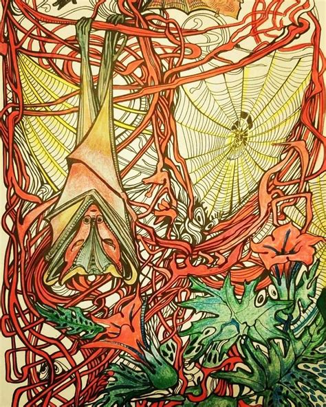 libro mythomorphia mejores 2474 im 225 genes de colorbooks animorphia other morphias other doodles en