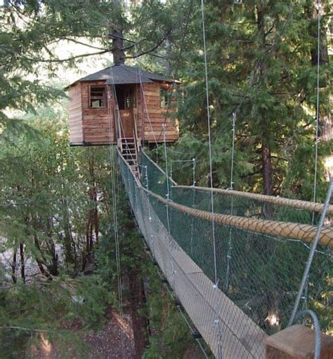 tree house resort oregon out n about treehouse resort cave junction or resort reviews resortsandlodges com