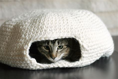 pattern cat cave the dapper toad an oven for my muffin