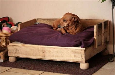 dog bed plans wooden pallet dog bed plans pallet wood projects