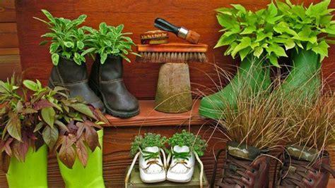 Pupuk Untuk Bunga Sepatu 4 cara kreatif menanam di rumah rumah dan gaya hidup
