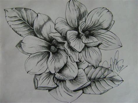 magnolia flower tattoo designs 1000 images about tattoos on