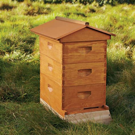 backyard bee keeping backyard beekeeping just got easier check out williams