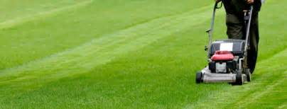 Reliable Lawn Care And Mowing Services At Competitive Prices » Ideas Home Design
