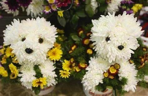 puppy bouquet puppy shaped bouquet the sue