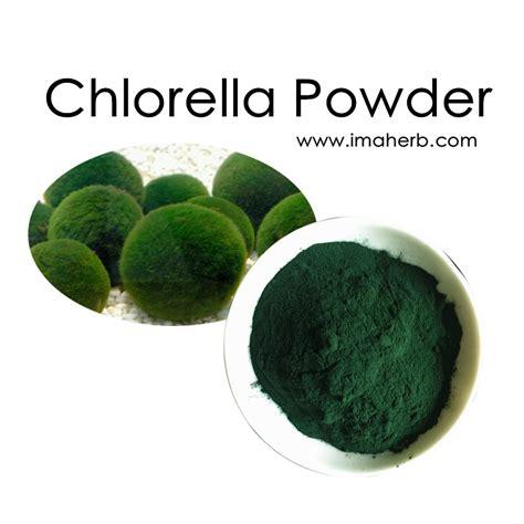 Chlorella Powder chlorella powder organic chlorella vulgaris powder