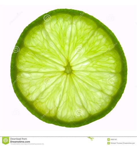 lime slice lime slice clipart clipart suggest